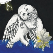 Magnolia Electric Co. (10 Years Anniversary Edition)