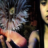 Lifeforms - Vinyl Reissue