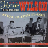 Steel Guitar Flash!