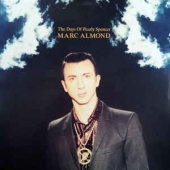 The Days Of Pearly Spencer