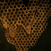 Map Of What Is Effortless