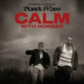 CALM WITH HORSES