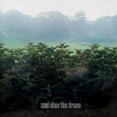 And Also The Trees - Rsd Release